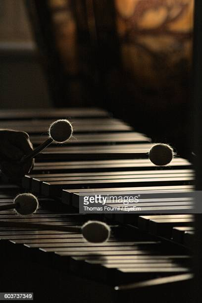 Cropped Image Of Person Hand Playing Marimba