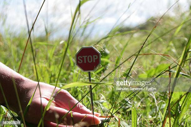 Cropped Image Of Person Holding Small Stop Sign On Grassy Field