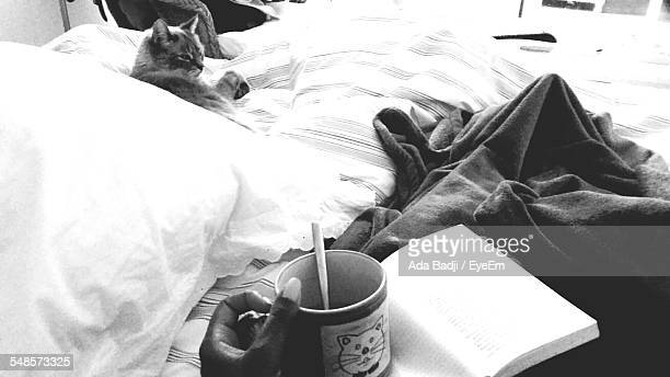 Cropped Image Of Woman Having Coffee On Bed