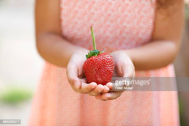 Cropped shot of girl holding a fresh strawberry in garden