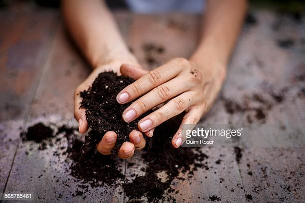 Cropped view of hands holding soil