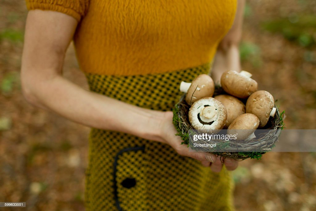 Cropped view of mature woman holding nest filled with mushrooms