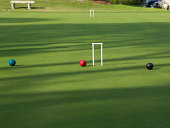 Croquet balls and wickets