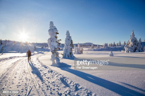 A cross country skier in the Norwegian mountains : Stock Photo