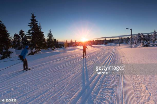Cross Country Skiers at Sunset