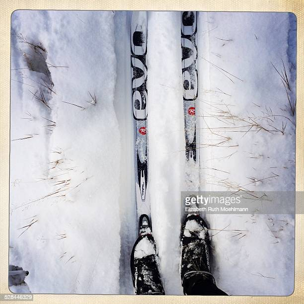cross country skiing from a first person perspective