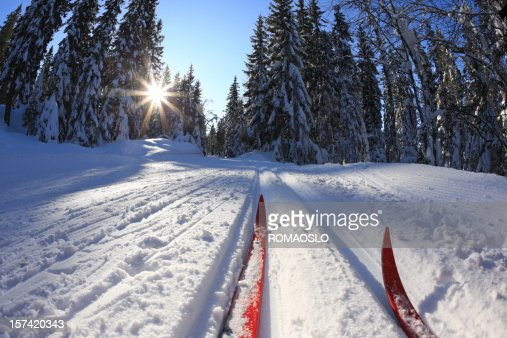 Cross country skiing in Oslo, Norway