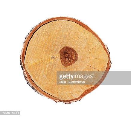 Secção cruzada do tronco Bétula isolado sobre branco, Cepo : Foto de stock