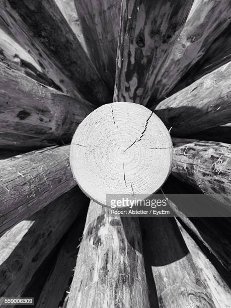 Cross Section Of Wooden Post