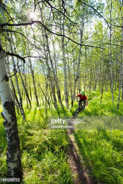 Cross-Country Mountain Bike Rider