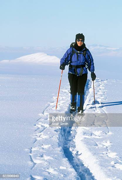 Cross-Country Skier on Ridge