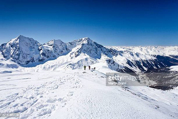 Cross-country skiers descending Hintere Schoentaufspitze Mountain, Solda, looking towards Koenigsspitze Mountain, Zebru Mountain Ortler Mountain and the Suldental Valley, Alto Adige, Italy, Europe