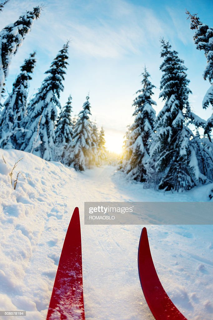 Cross-country skiing at sunset in Oslo, Norway : Stock Photo