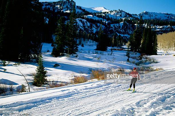 Cross-Country Skiing in Bear River Range