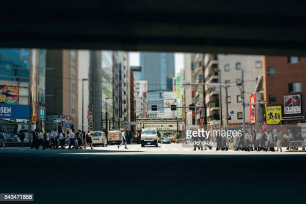 Crossing in Japan