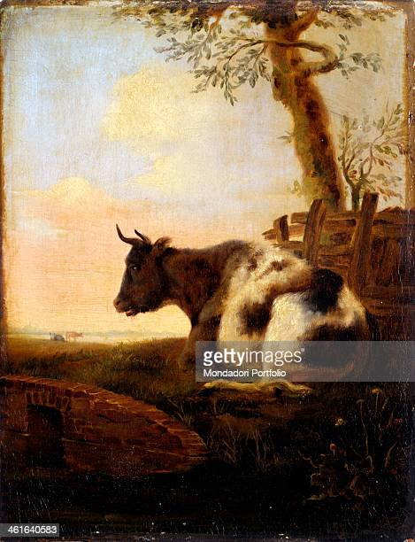 Crouching Cow after Jan Kobell II first half of the 19th Century oil on board 20 x 26 cm Italy Lombardy Milan Castello Sforzesco Civic Collections of...