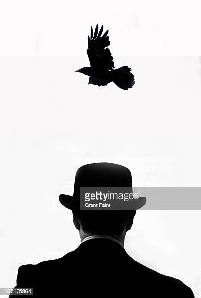 Crow flying over man