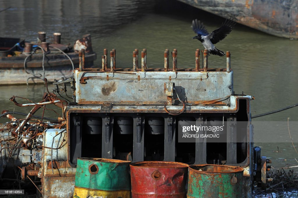 A crow lands on an abandoned ship engine near the banks of the Sava river in Belgrade on February 13, 2013.