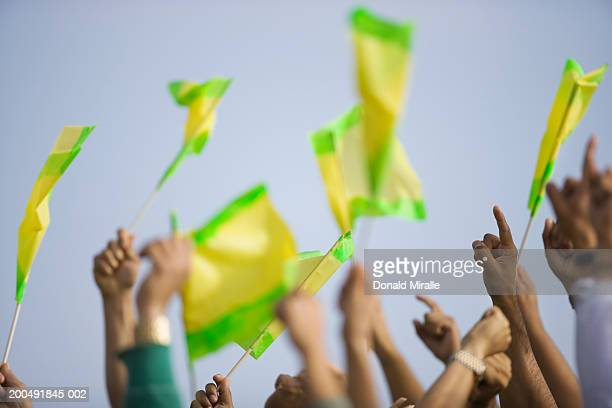 Crowd holding flags in stadium