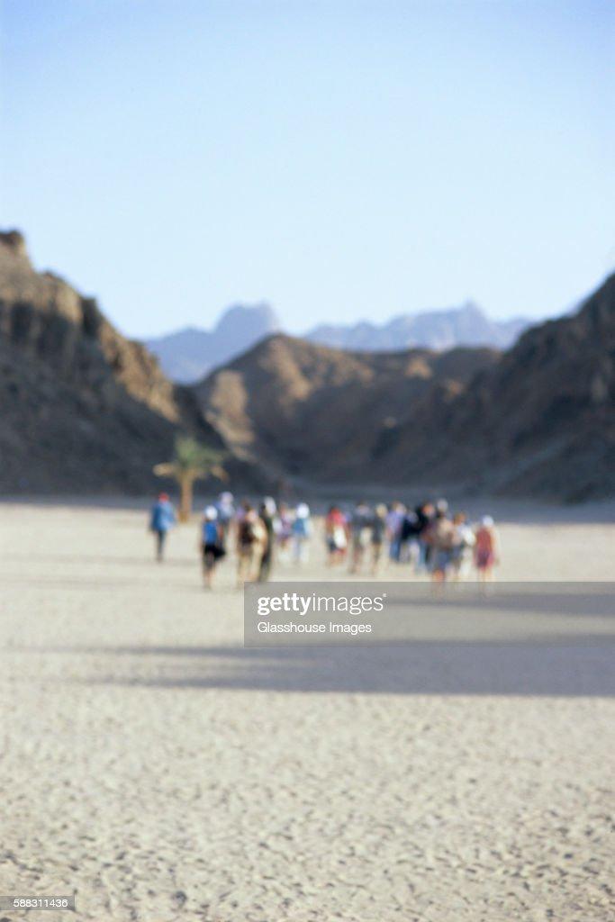 Crowd in Desert, Egypt