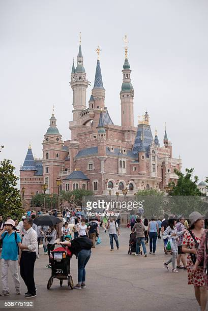 Crowd near castle in Disneyland Shanghai