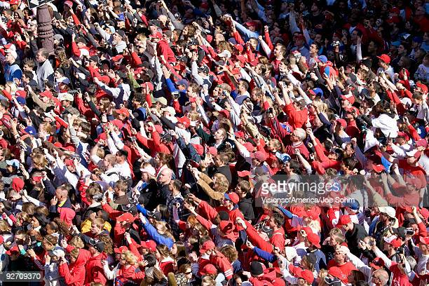 Crowd of baseball fans