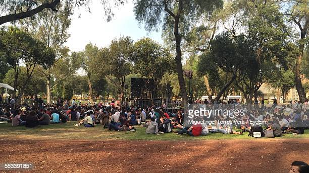 Crowd Of People Sitting On Park Law
