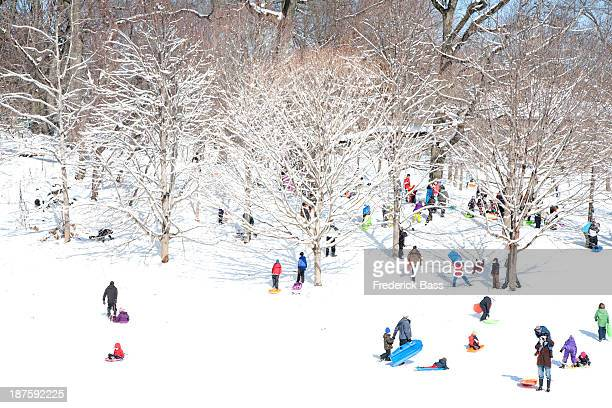 A crowd of people sledding in a park