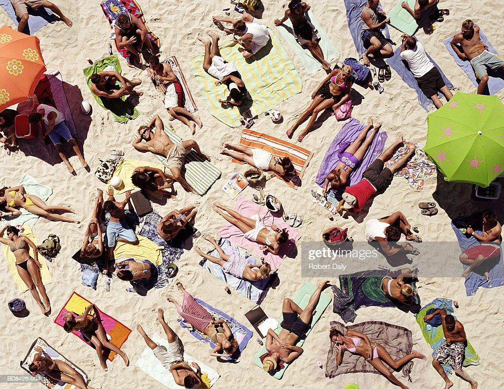 Crowd of people sunbathing on beach, over head view : Stock Photo
