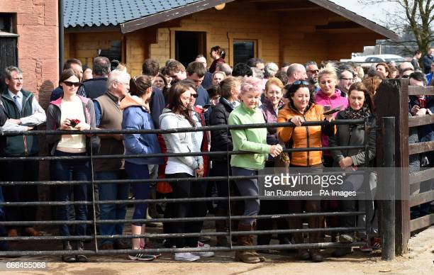 Crowds gather to see Grand National winner One For Arthur at trainer Lucinda Russell's yard in Kinross Scotland