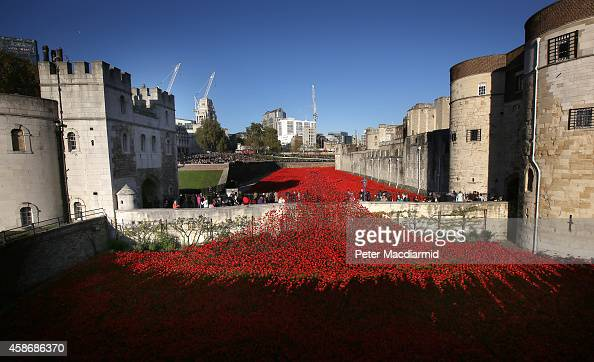 Crowds of visitors view the 'Blood Swept Lands and Seas of Red' installation in the moat of the Tower of London on November 9 2014 in London England...