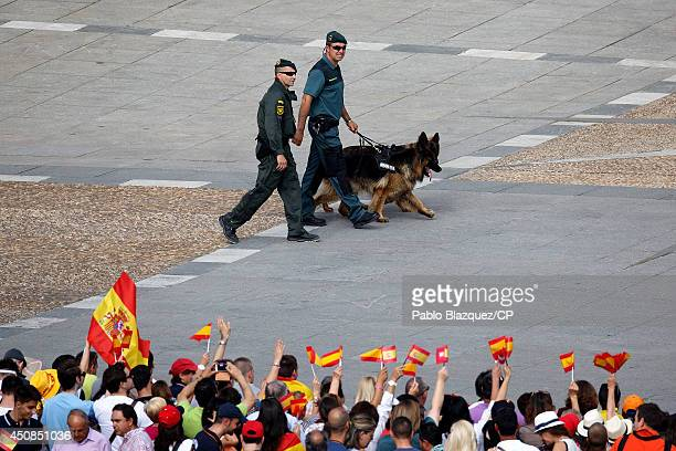 Crowds of wellwishers wave Spanish flags as policemen work with sniffer dogs at the Royal Palace prior to the King's official coronation ceremony on...