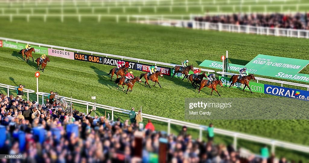 Crowds watch as Midnight Prayer ridden by Joshua Newman wins the National Hunt Chase Amateur Riders Novice Chase on the first day of the Cheltenham Festival on March 11, 2014 in Cheltenham, England. Thousands of racing enthusiasts are expected at the four-day festival, which starts today with the festival's Champion Day and is seen as many as the highlight of the jump racing calendar.
