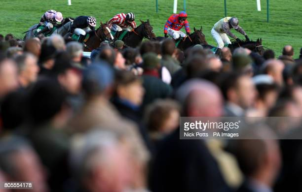 Crowds watch the close finish in The Paddy Power Intermediate Handicap which was won by Wolf Moon ridden by Warren Marston at Cheltenham Racecourse...