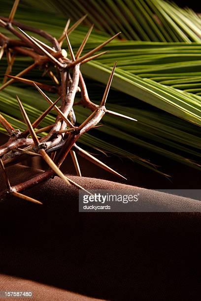 Corona de Thorns y las ramas
