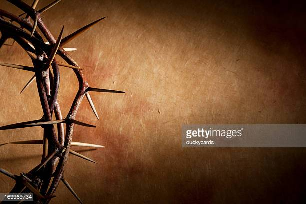 Crown of Thorns with Copyspace