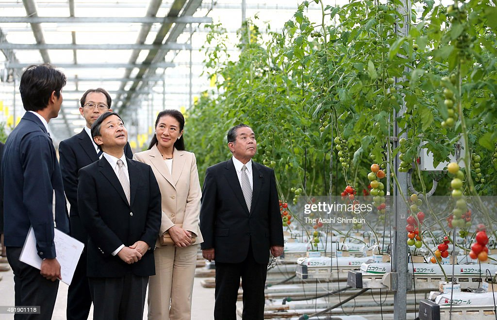 <a gi-track='captionPersonalityLinkClicked' href=/galleries/search?phrase=Crown+Prince+Naruhito&family=editorial&specificpeople=158365 ng-click='$event.stopPropagation()'>Crown Prince Naruhito</a> and <a gi-track='captionPersonalityLinkClicked' href=/galleries/search?phrase=Crown+Princess+Masako&family=editorial&specificpeople=580174 ng-click='$event.stopPropagation()'>Crown Princess Masako</a> visit a greenhouse of the Tomato Land Iwaki on October 8, 2015 in Iwaki, Fukushima, Japan.