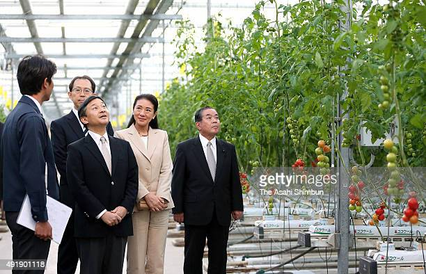 Crown Prince Naruhito and Crown Princess Masako visit a greenhouse of the Tomato Land Iwaki on October 8 2015 in Iwaki Fukushima Japan