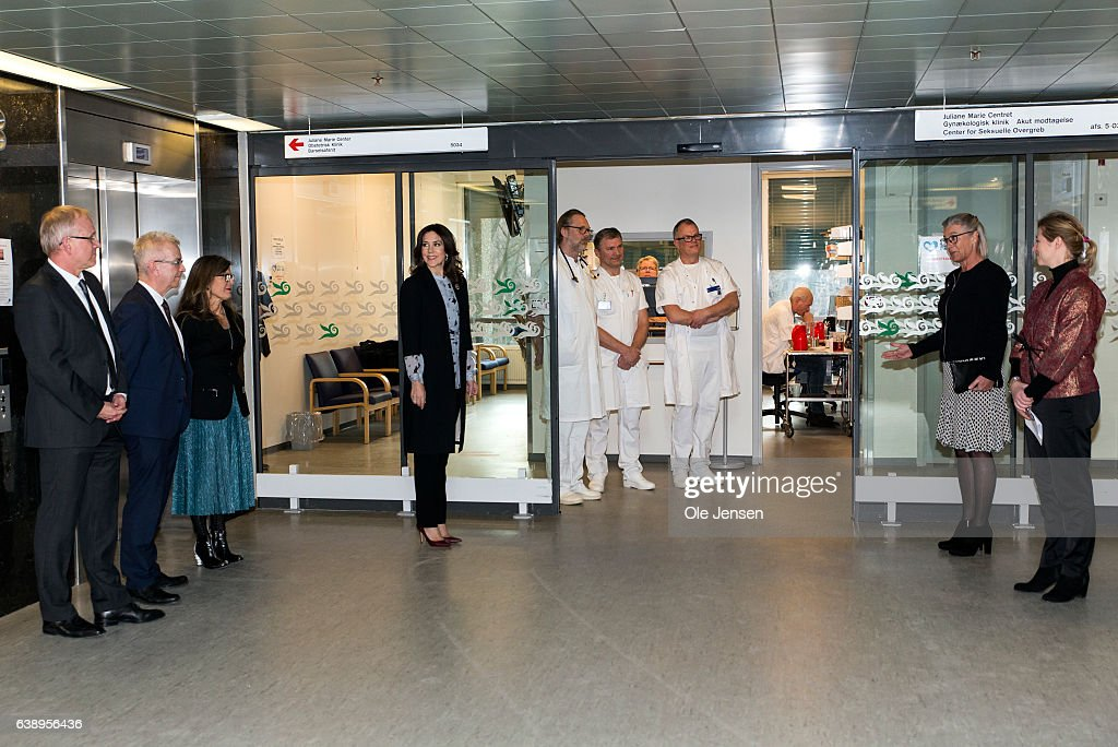 crown-princess-mary-is-welcomed-by-anne-kaltoft-chair-the-danish-to-picture-id638956436