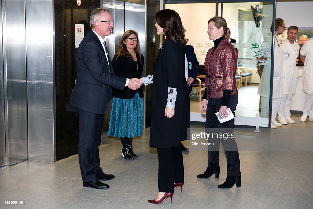 crown-princess-mary-is-welcomed-by-hospital-director-per-christiansen-picture-id638956406
