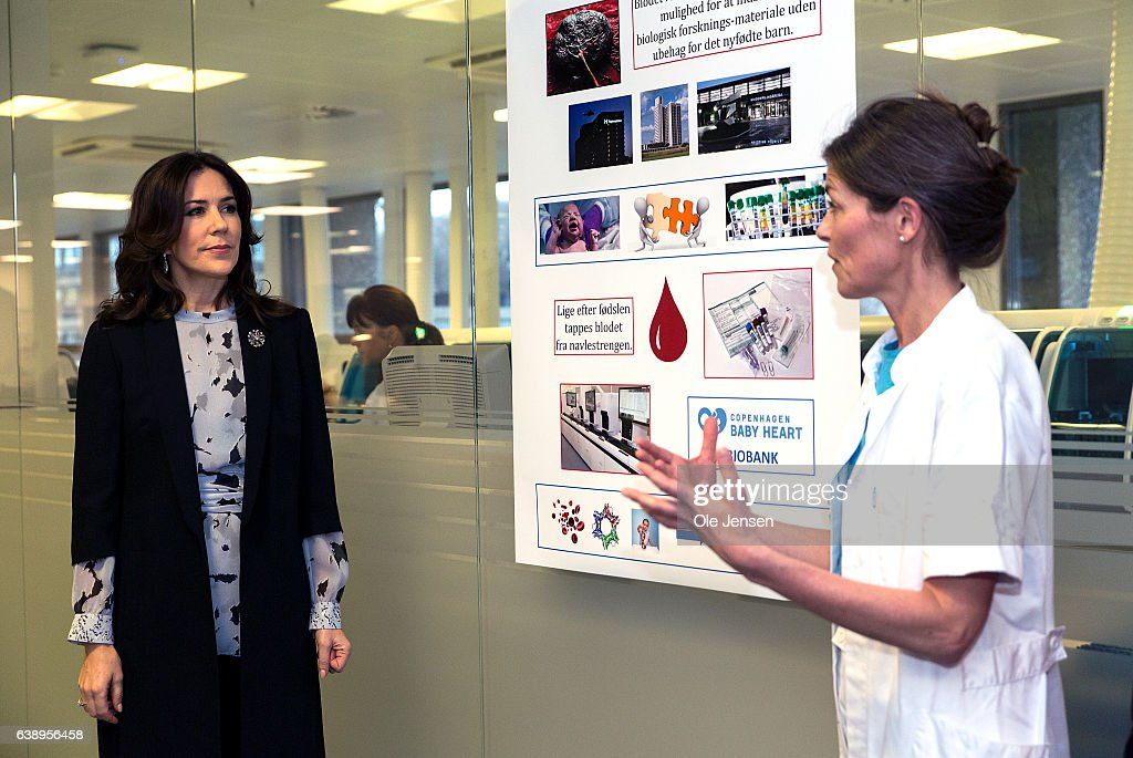 crown-princess-mary-visits-in-her-capacity-as-protector-the-baby-picture-id638956458