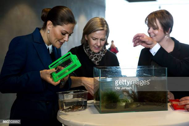 Crown Princess Victoria of Sweden together with Swedish Environment Minister Karolina Skog and mayor of Malmo Municipality Katrin Stjernfeldt Janmerk...