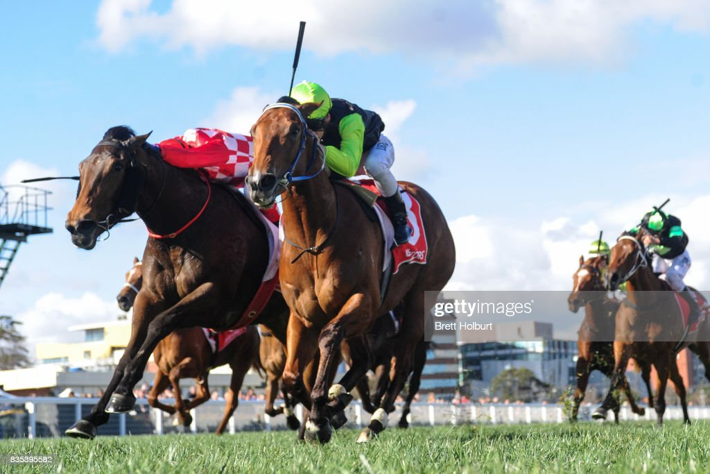 Crown Witness ridden by Ben Melham wins Winslow Group Quezette Stakes at Caulfield Racecourse on August 19, 2017 in Caulfield, Australia.