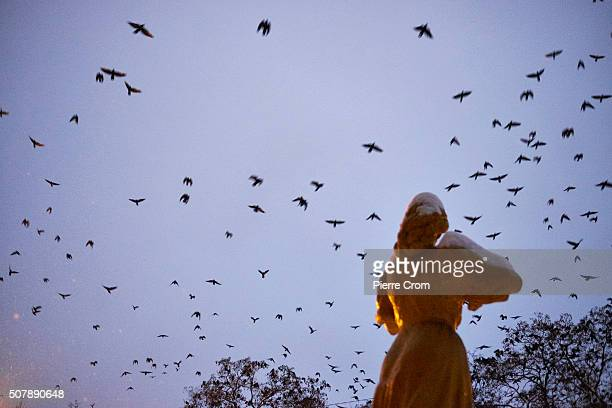 Crows fly over a monument likening a woman playing violin outside musical school nr 1 Ivan Alchevskyi on December 29 2015 in Alchevsk Over 800 Lenin...