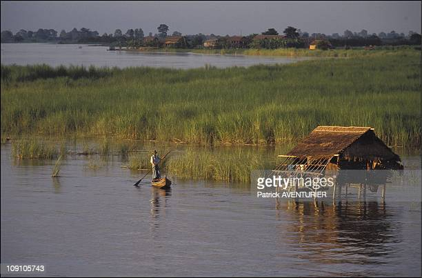Cruise On The Irrawady River On January 8Th Myanmar The Rice Fields Of Bhamo On The Irrawaddy