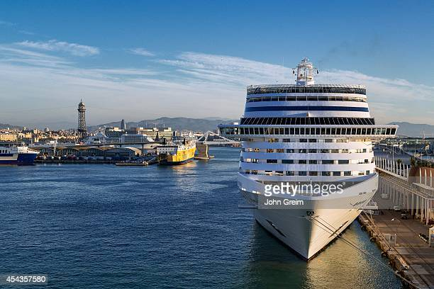 Cruise ship docked in harbor