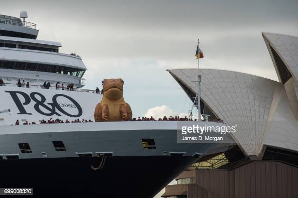 Cruises Australia's Pacific Aria arrives in Sydney with a cane toad inflatable attached to the bow on June 21 2017 in Sydney Australia Hundreds of...