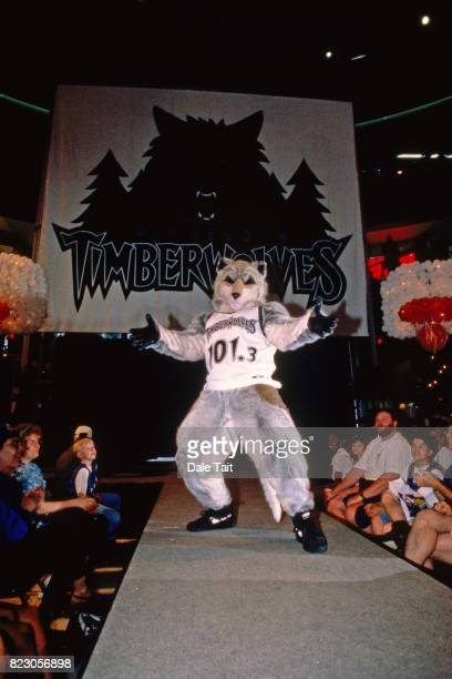 Crunch the Wolf helps the Minnesota Timberwolves announce a new logo circa 1996 in Minneapolis Minnesota NOTE TO USER User expressly acknowledges and...