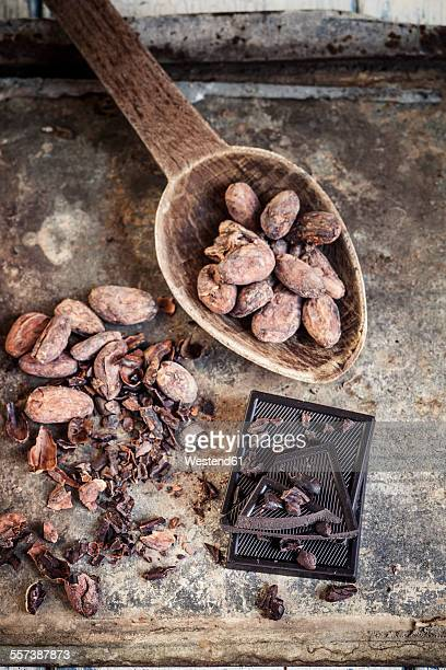 Crushed and whole cocoa beans and dark chocolate