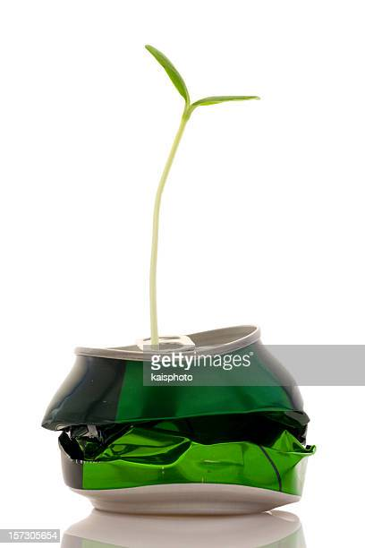 Crushed can with sprout growing out of spout